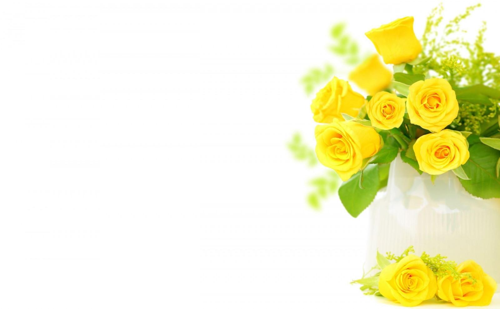 Открытки с цветами на белом фоне 27