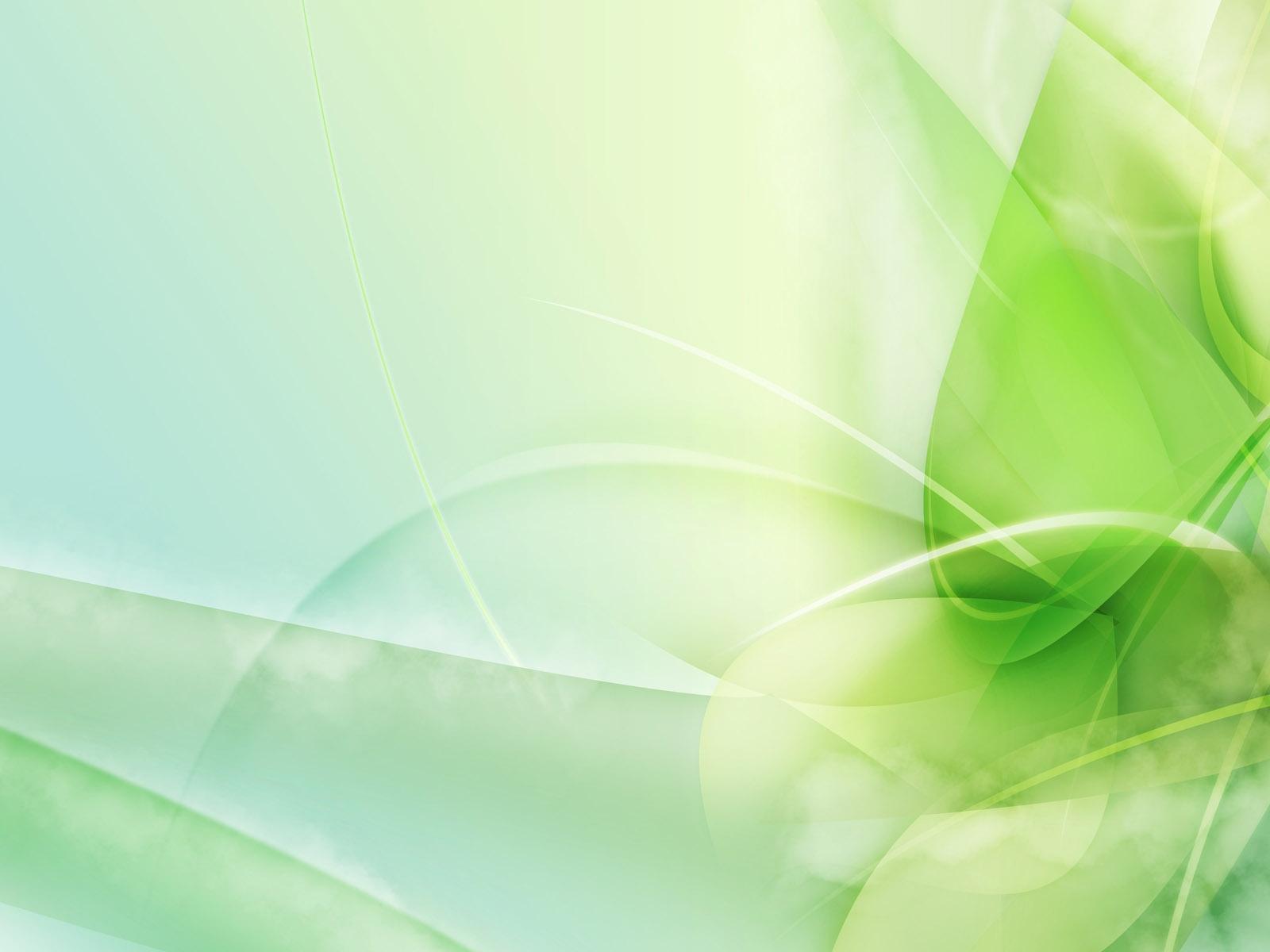 デスクトップ壁紙 草 緑 黄 行 明るい 光 葉 フローラ