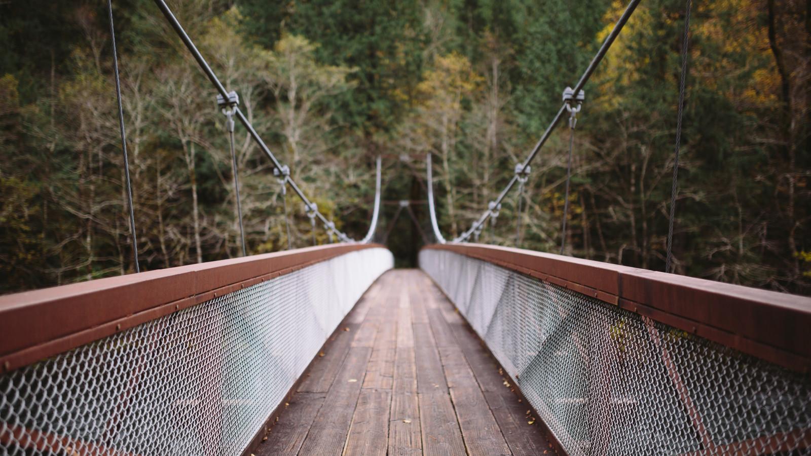 находится постер подвесной канатный мост хофф карандашом самый, пожалуй