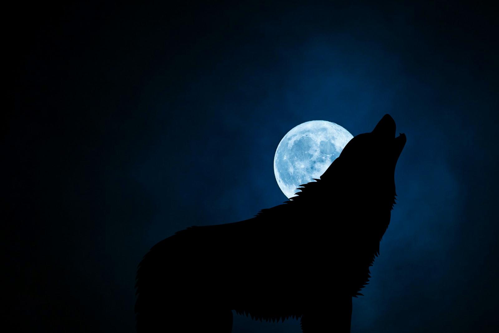 Картинки с полной луной и волком, домиком