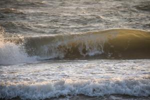 Море влагалищ