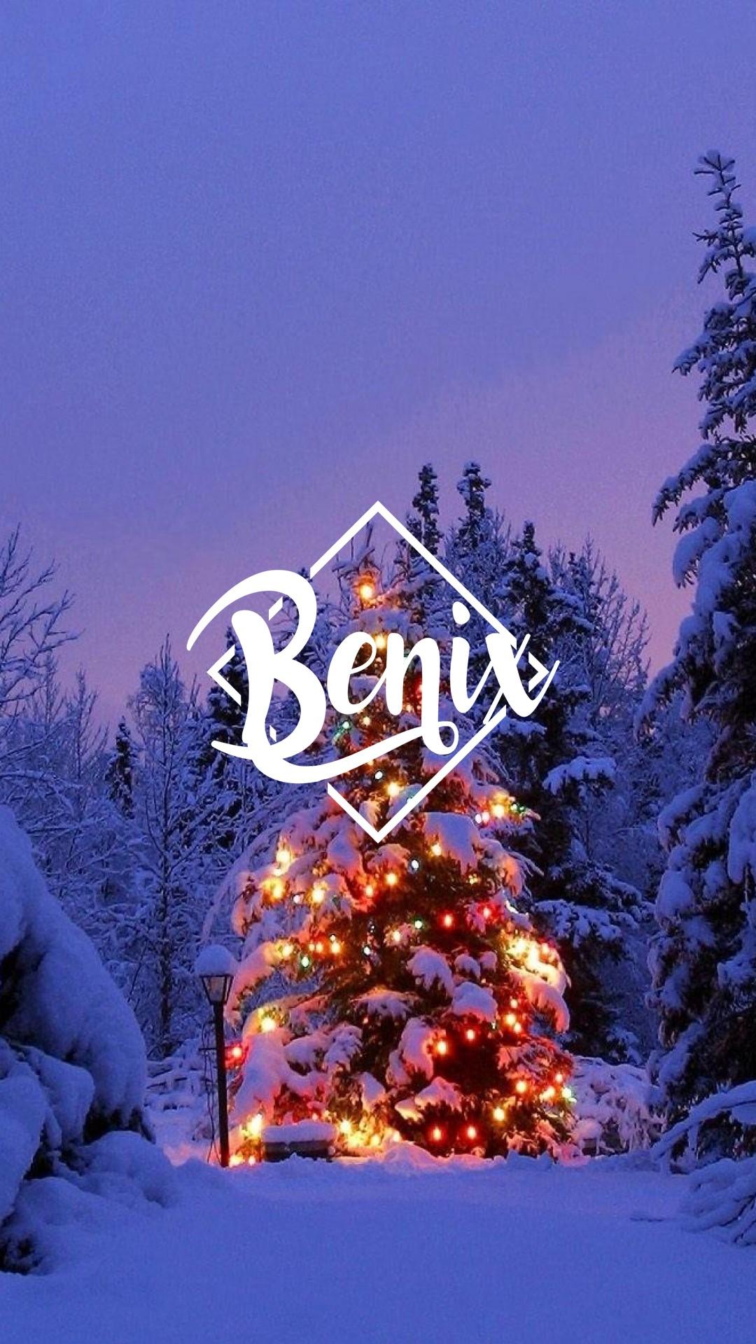デスクトップ壁紙 雪 冬 クリスマスツリー モミ 電話の壁紙 木