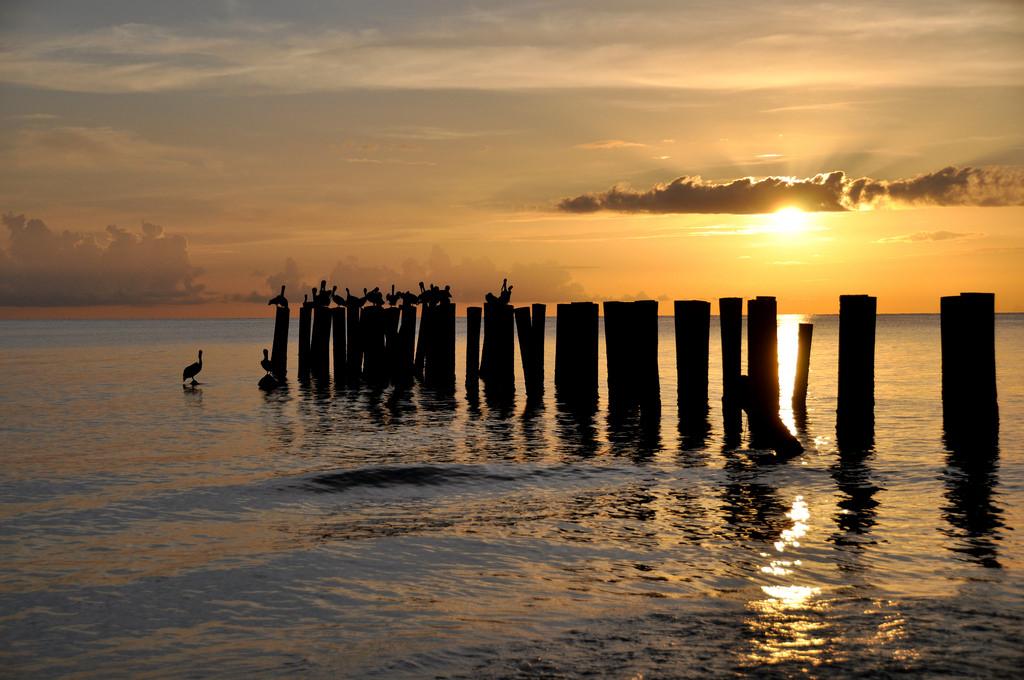 Sunlight Sunset Sea Water Shore Reflection Sky Beach Sunrise Calm Evening Morning Coast Sun Horizon Pier
