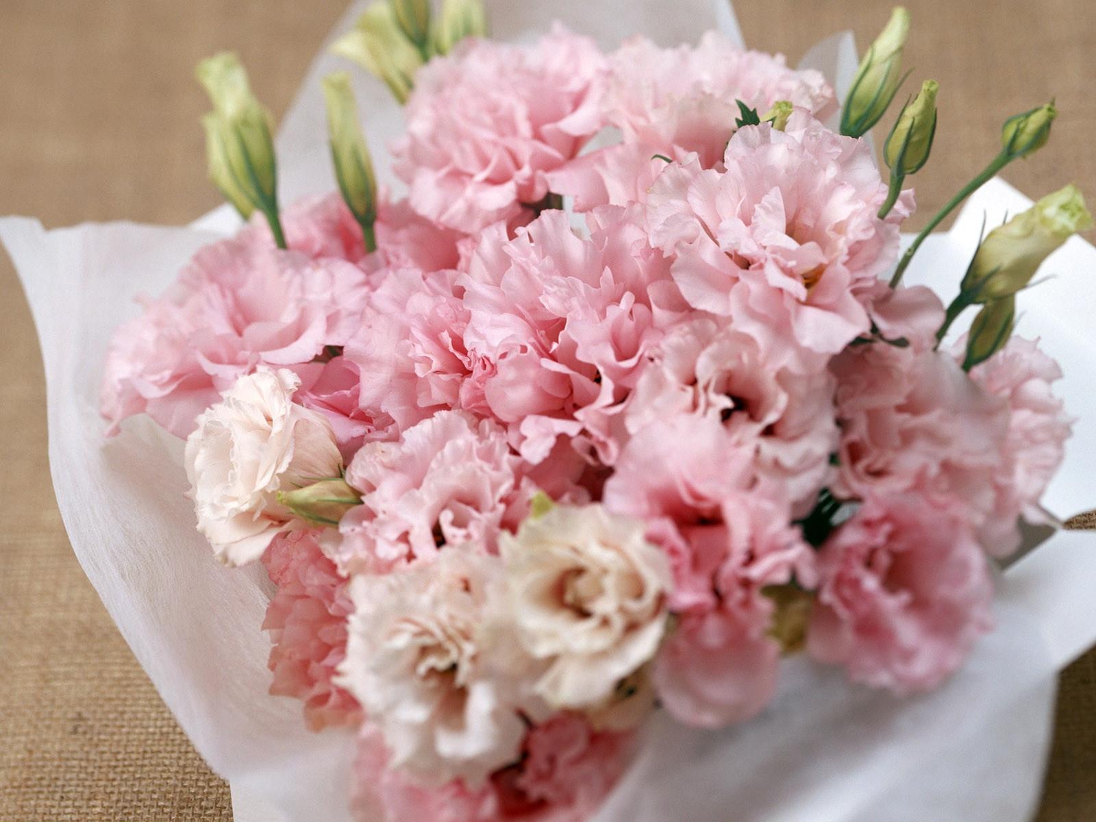 Картинки с красивым букетом цветов гвоздики, воссоединение крыма