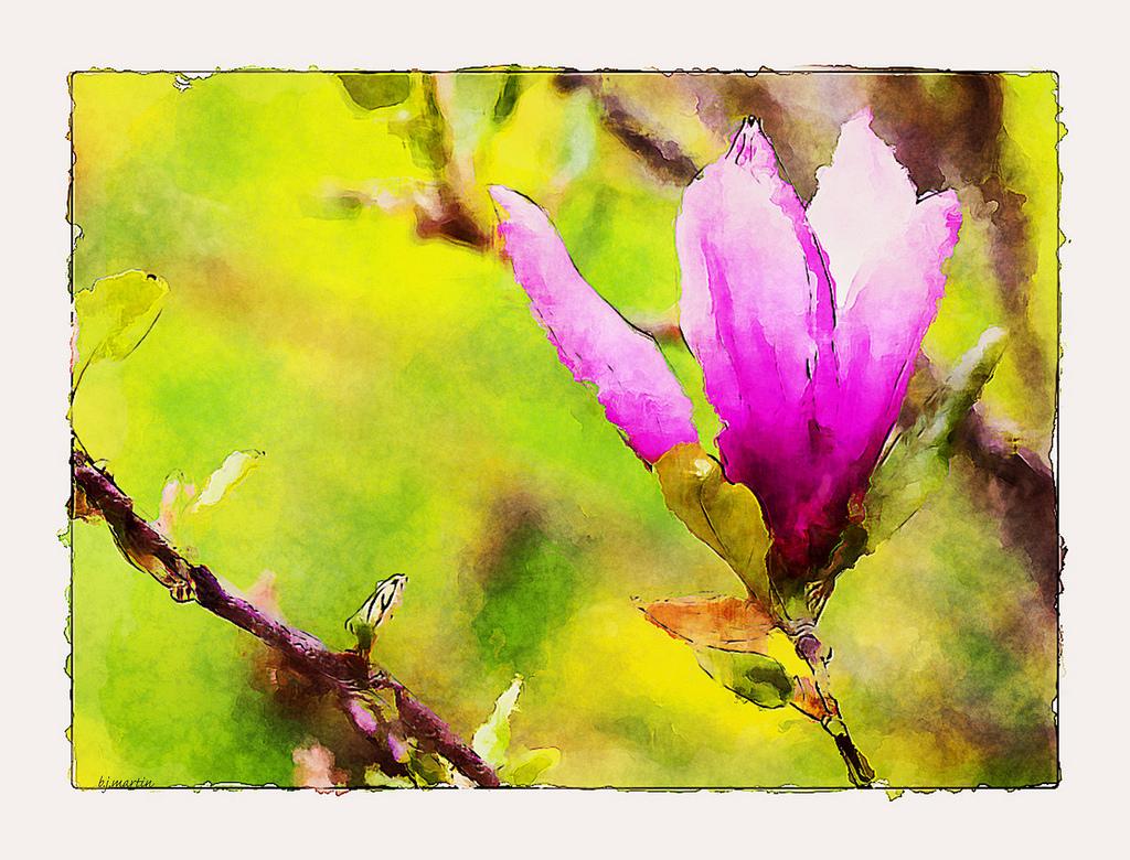 Masaüstü Boyama şube Doku çiçeği Dokulu Pembe Manolya Renk