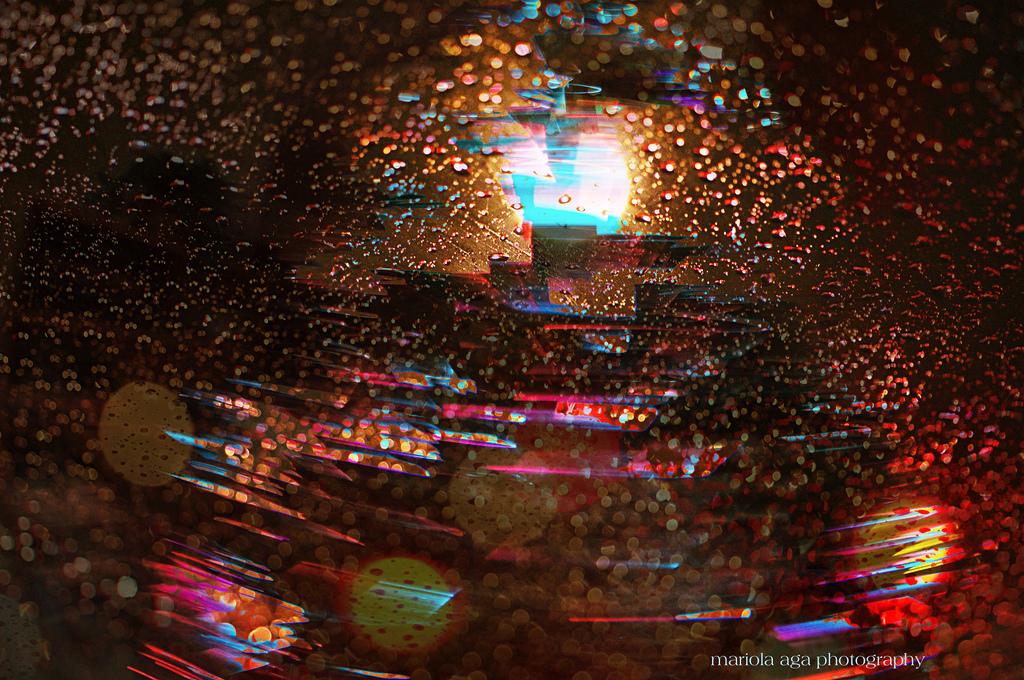 wallpaper street night rain closeup macro christmas tree