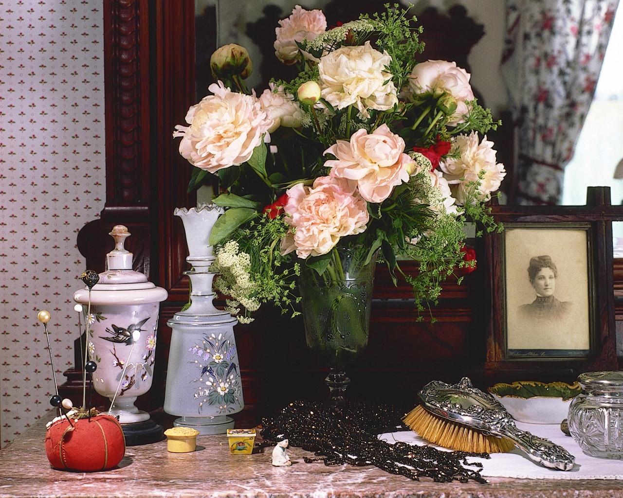 Все о цветах орхидеи фотографии самое главное