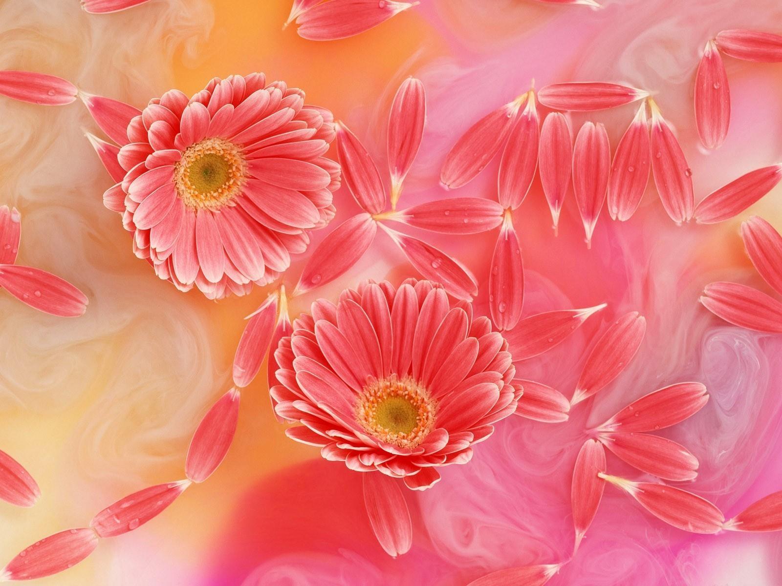 Днем рождения, фон цветы для открытки
