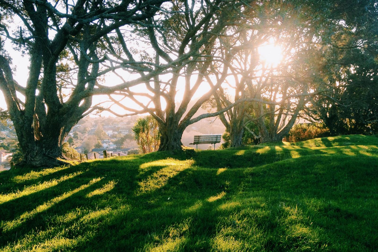 Wallpaper Sunlight Landscape Sunset Garden Hill