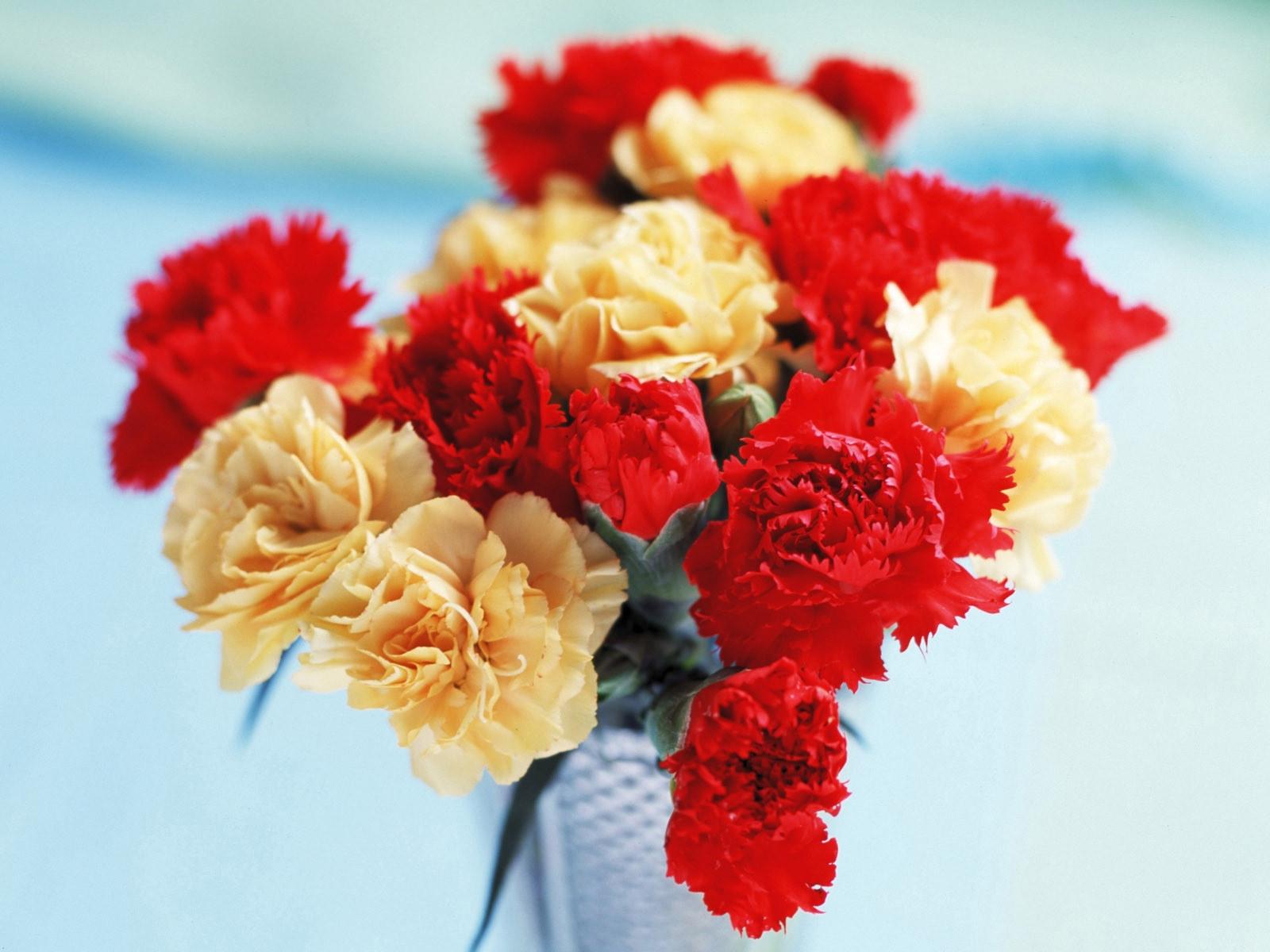 цветы для открыток гвоздики важный этап