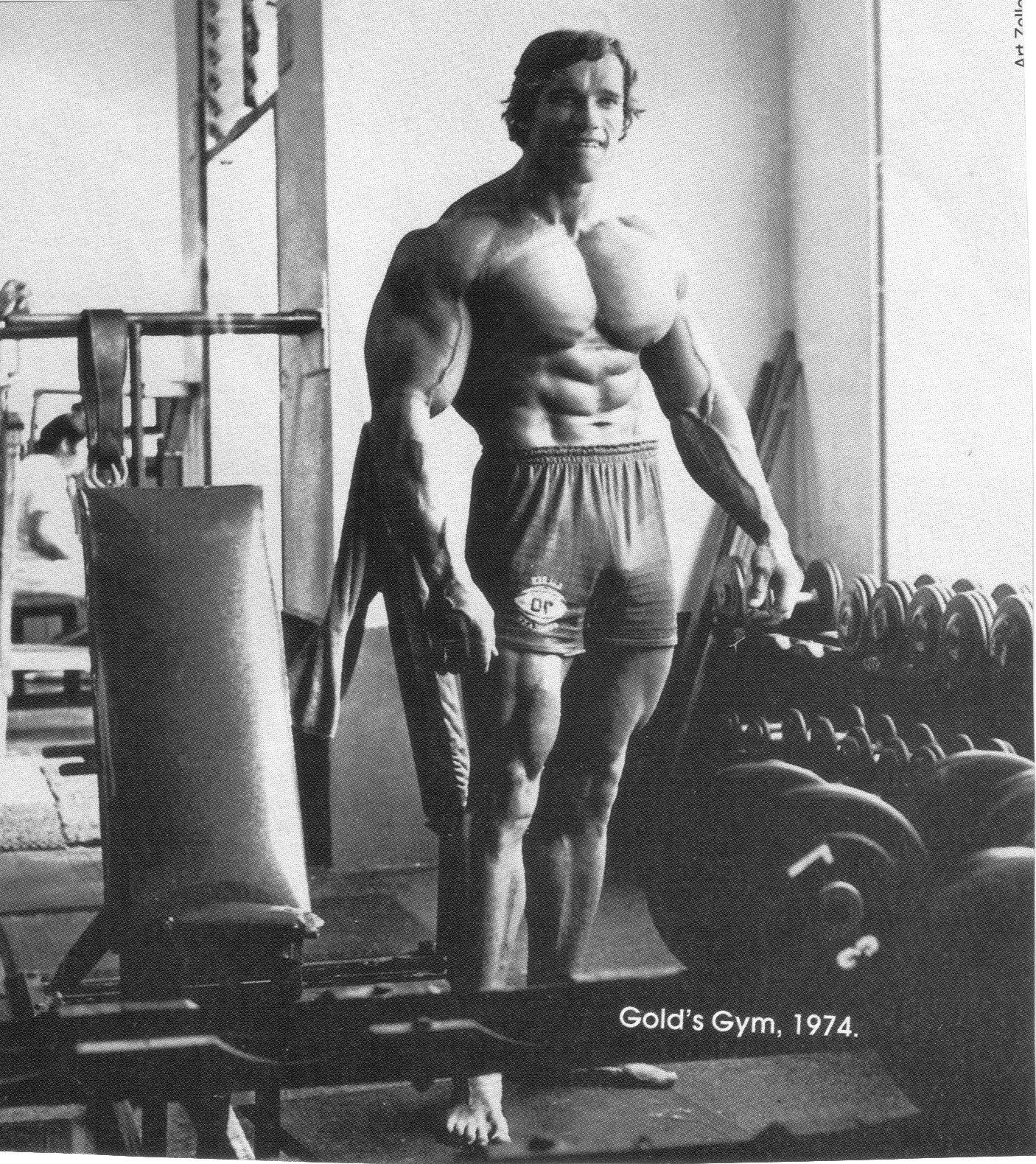 Monochrome Arnold Schwarzenegger Bodybuilder Skinny Gyms Exercising Dumbbells Bodybuilding Barbell Muscle Arm Chest Black And White