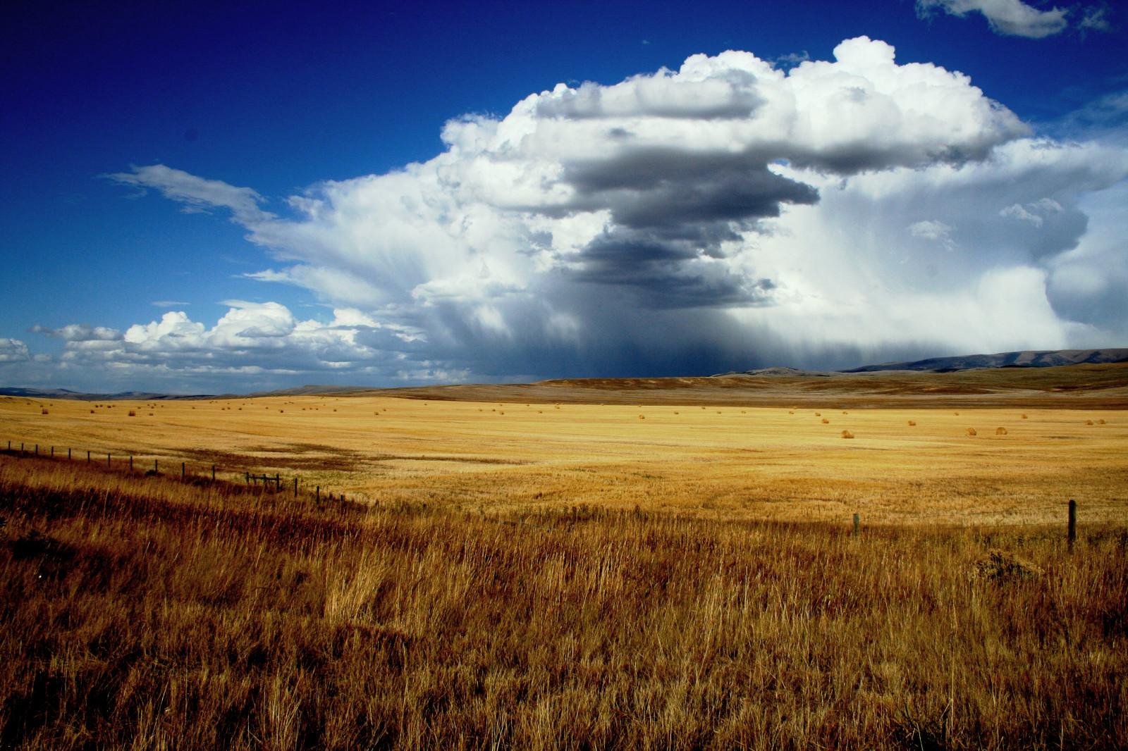 lumière du soleil paysage colline herbe ciel champ orage Matin horizon atmosphère Montana plateau steppe nuage journée prairie Prairie plaine jour prairie surgir grandes plaines zone rurale Papier peint de l'ordinateur Écosystème Famille d'herbe Phénomène météorologique cumulus savane Bruyère Écorégion champs de blé Bigskycountry Prarielands