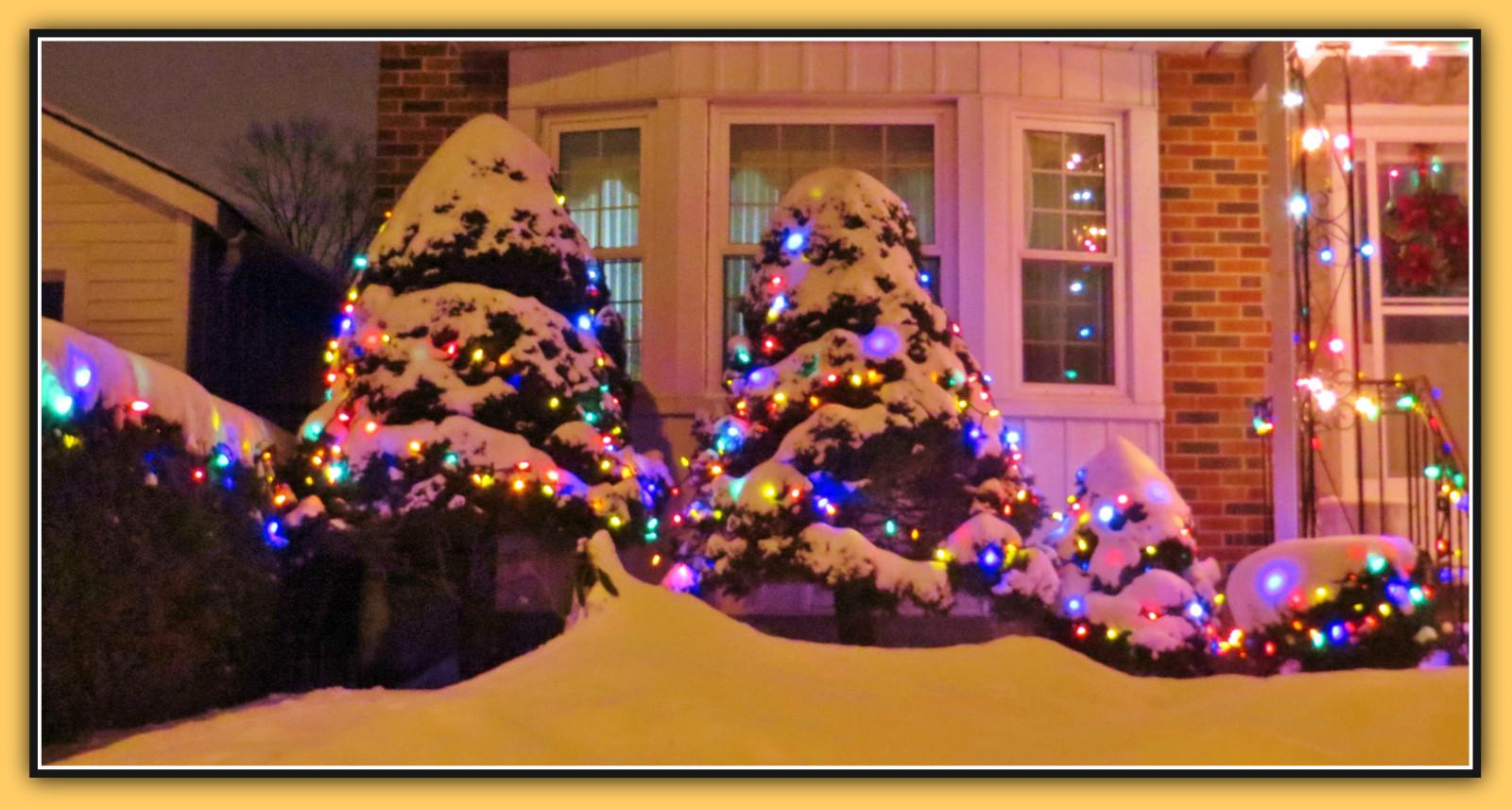 Weihnachtsbeleuchtung Kranz.Hintergrundbilder Bäume Beleuchtung Nacht Haus Weihnachtsbaum