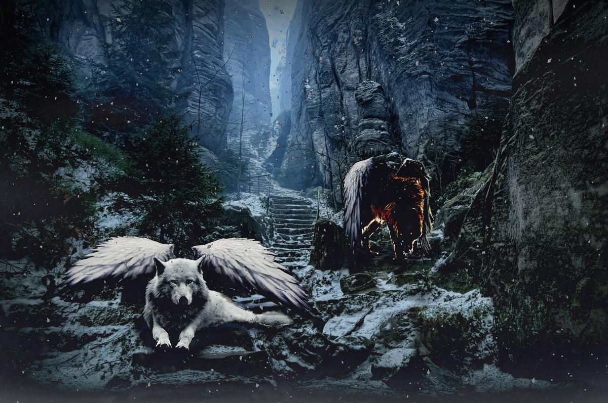всего фото ангелы с волками красивые ловкость сила