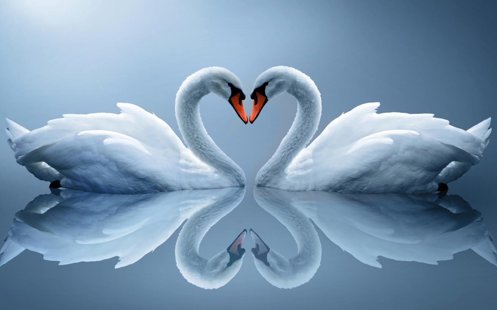 Слушать и скачать бесплатно в хорошем качестве на skydiver42.ru песни о любви.