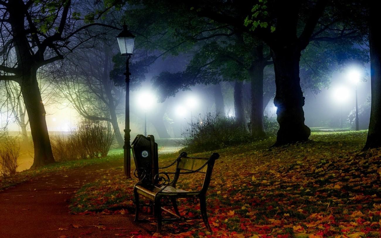 Картинки красивая ночь в парке, мультфильмов картинки для