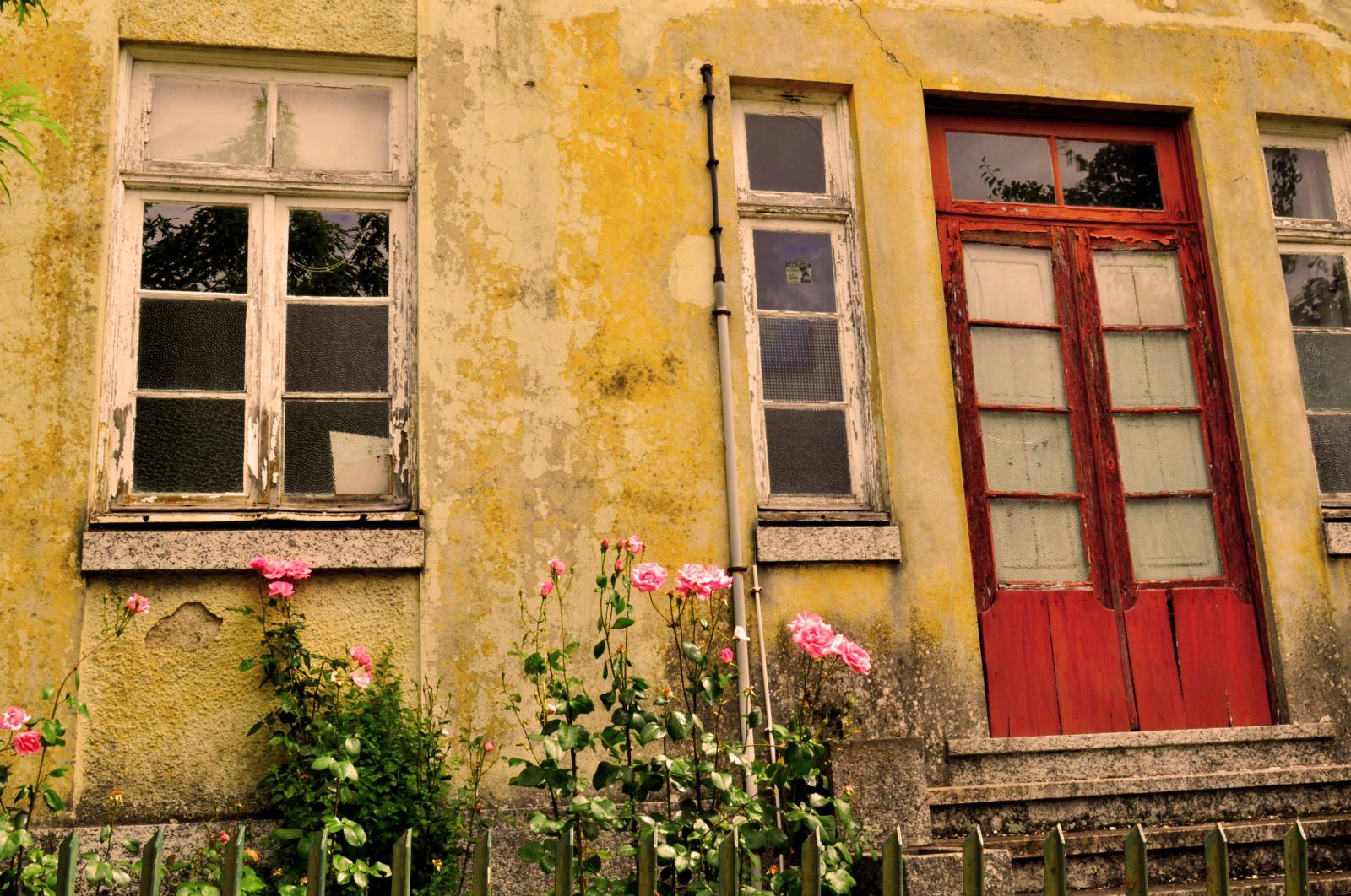 Wallpaper  Blonde, Window, Flowers, Architecture, Brunette, Red, Wall, House, Nikon -3529