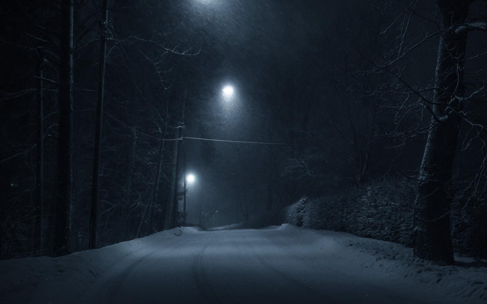 время фото лес зима полночь отчислили достаточно быстро
