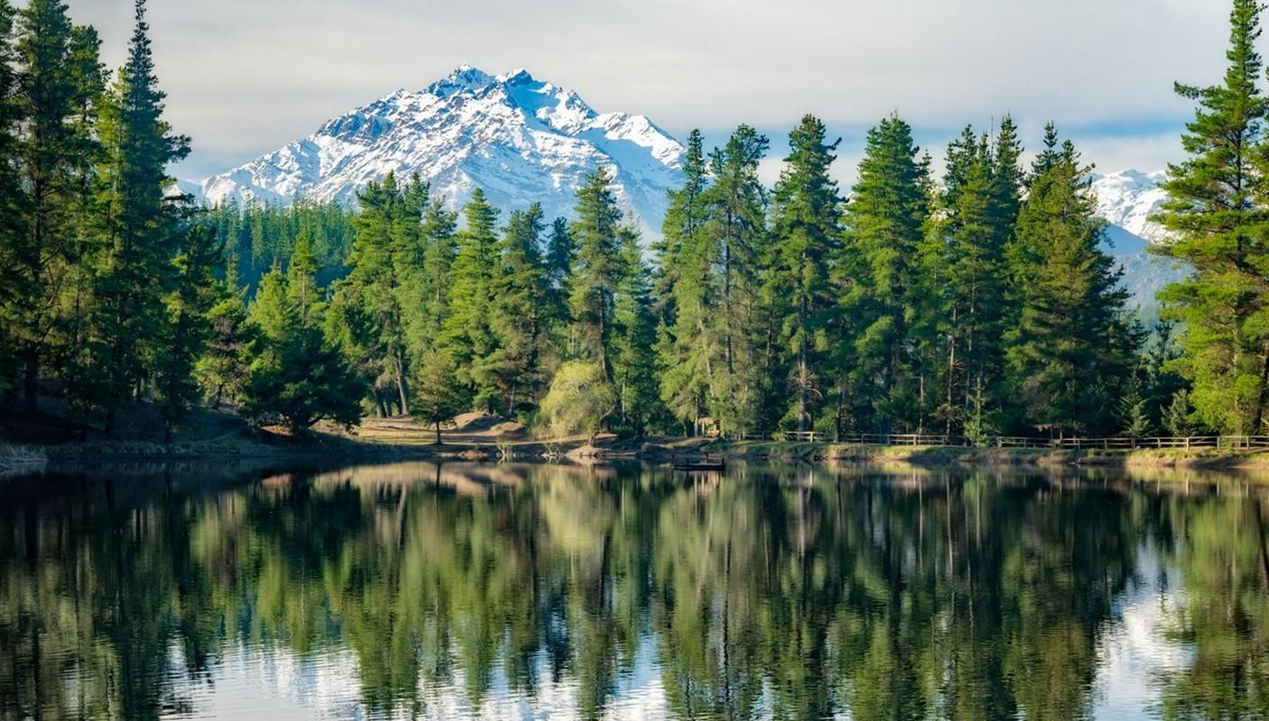 сбываются тех, красивые картинки с лесом и водой настоящие фото фотография