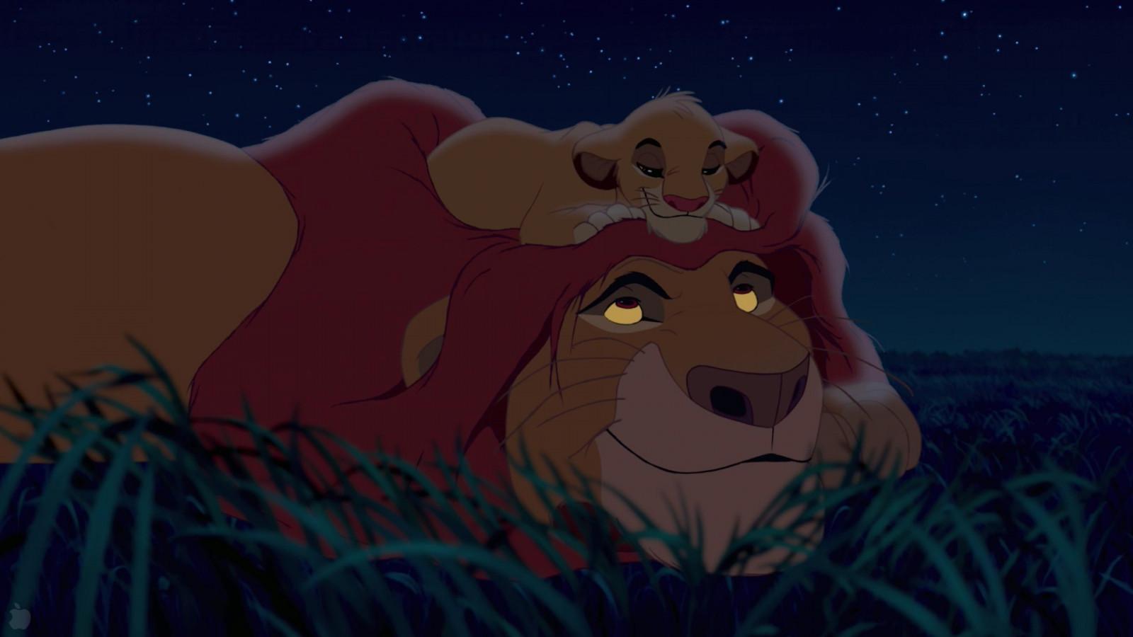 Sfondi illustrazione film leone cartone animato