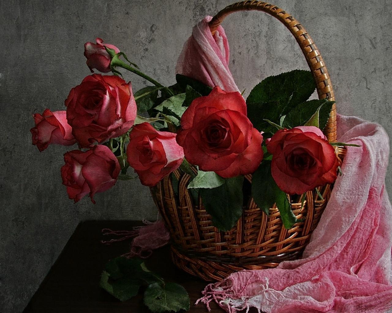 Kết quả hình ảnh cho bông hồng rác