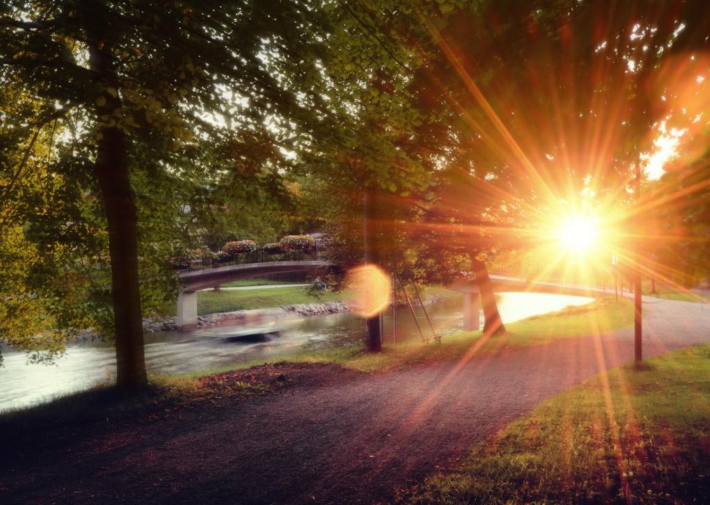 hintergrundbilder sonnenlicht b ume landschaft strassenlicht boot sonnenuntergang blumen. Black Bedroom Furniture Sets. Home Design Ideas