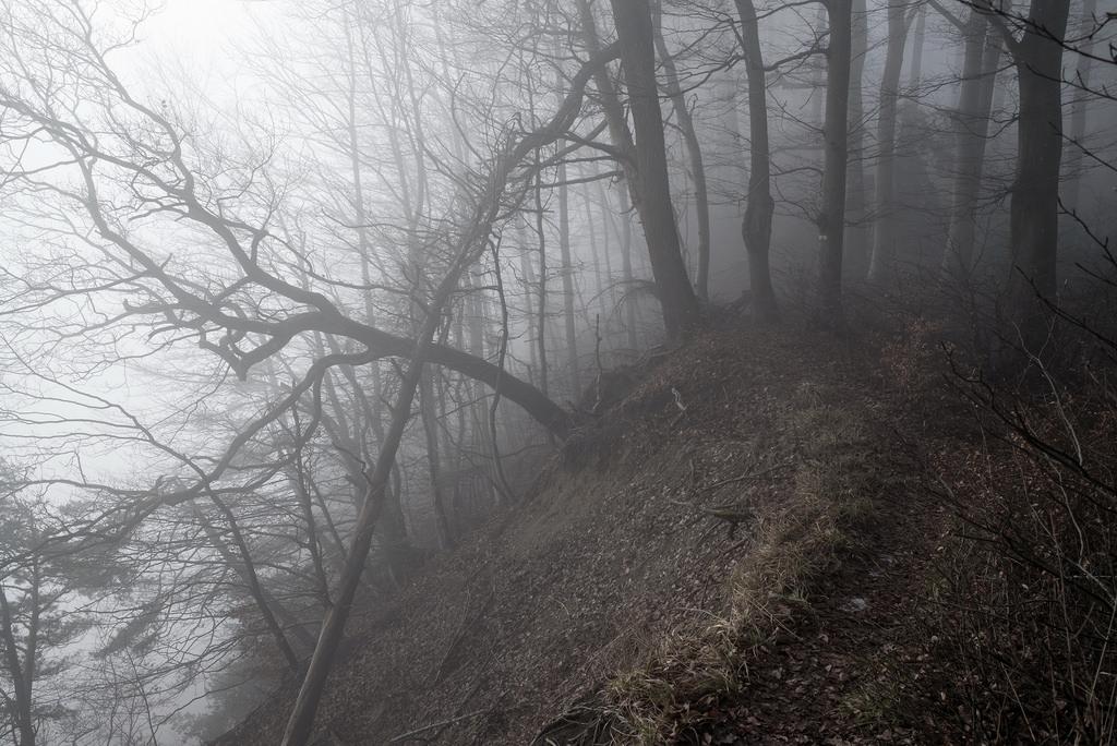 Entfernungsmesser Für Wanderer : Hintergrundbilder m entfernungsmesser messsucher leica