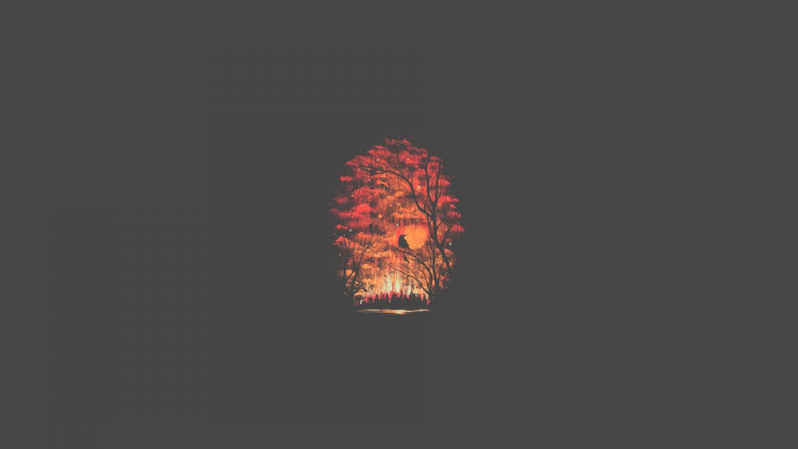 Feuer Beleuchtung | Hintergrundbilder Minimalismus Feuer Beleuchtung Flamme