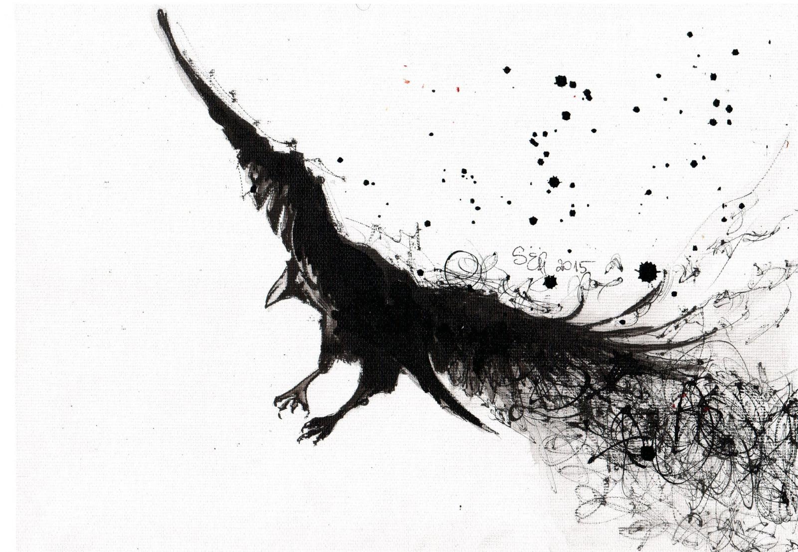 Fondos De Pantalla : Dibujo, Aves, Monocromo, Rama, Cuervo