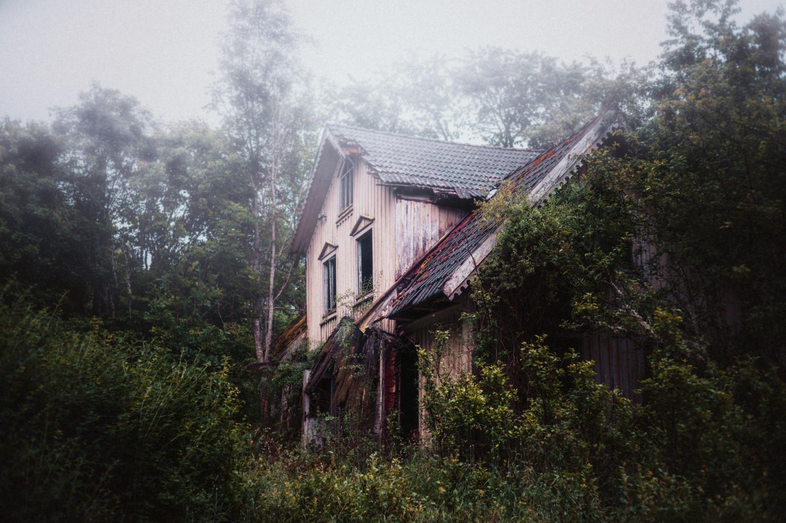 Couturie Forest Dehus_abandoned_abandonedhouse_fog_dimma_skog_forest_woods-848289