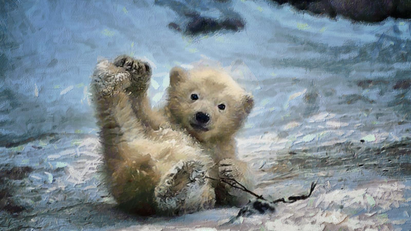 Masaüstü Boyama Dijital Sanat Hayvanlar Doğa Kar Kış Vahşi