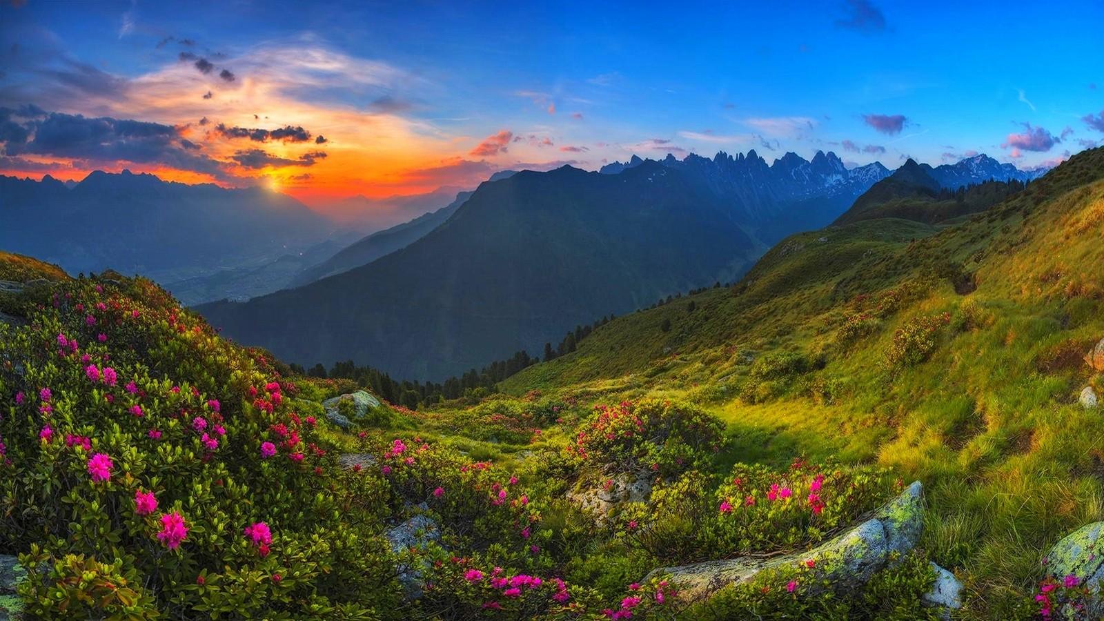 landscape mountains hill nature grass sky clouds mist valley wildflowers wilderness Austria Tyrol plateau ridge autumn