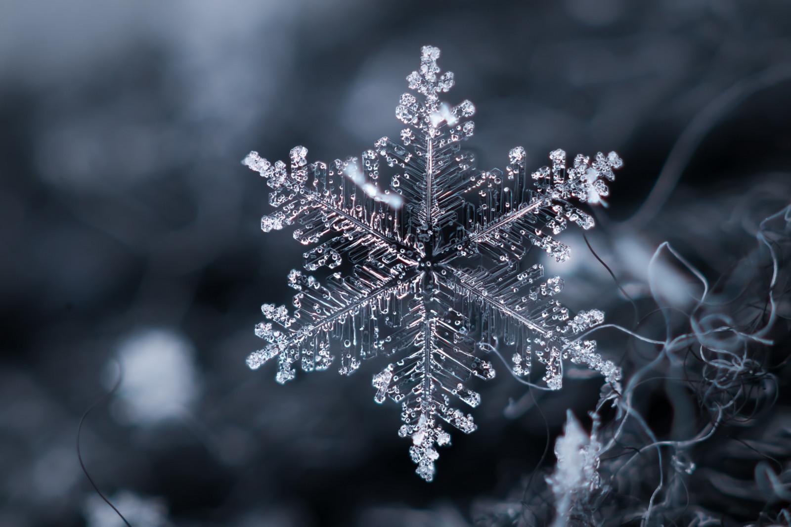 Прекрасные снежинки картинки