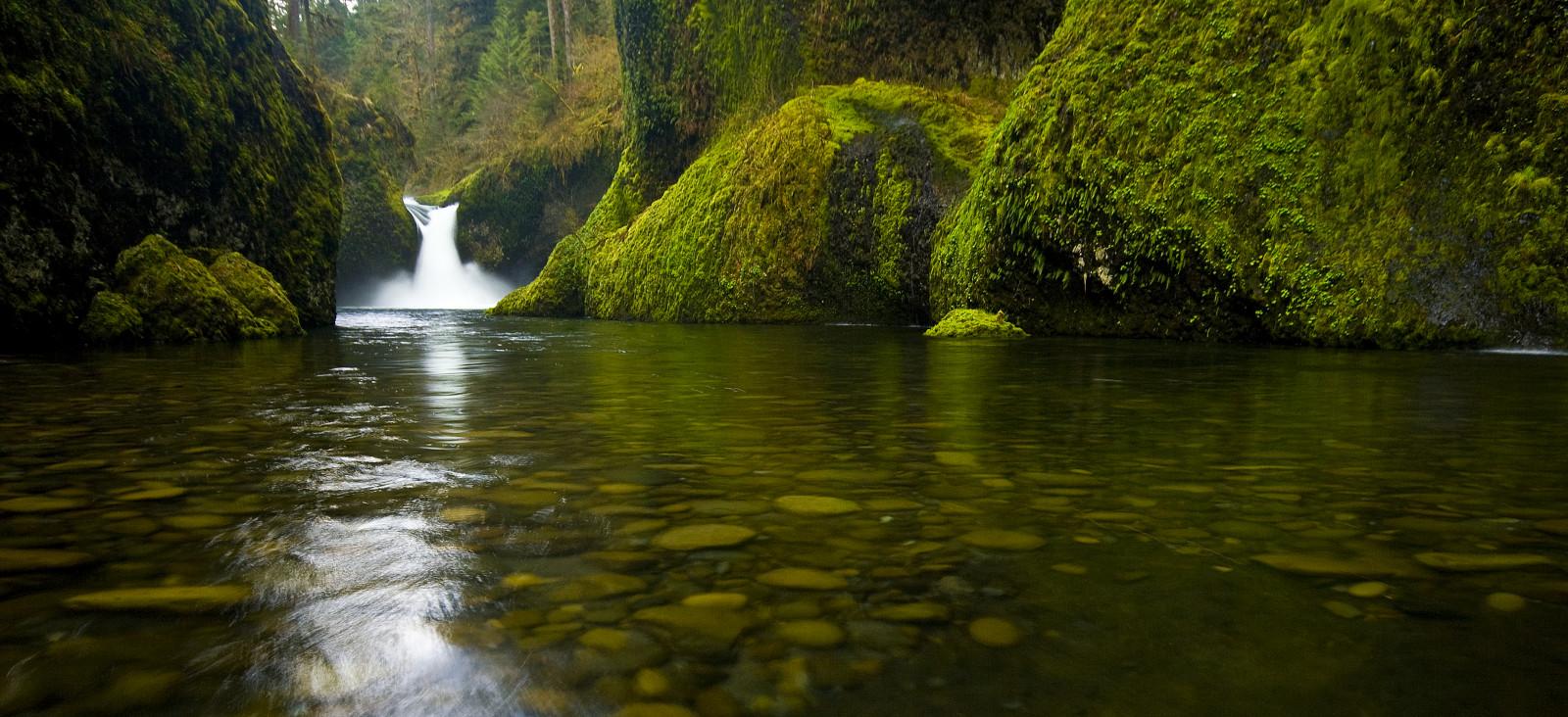 Nature Wallpaper Waterfall Columbia River Oregon: Wallpaper : Landscape, Waterfall, Rock, Reflection, Moss