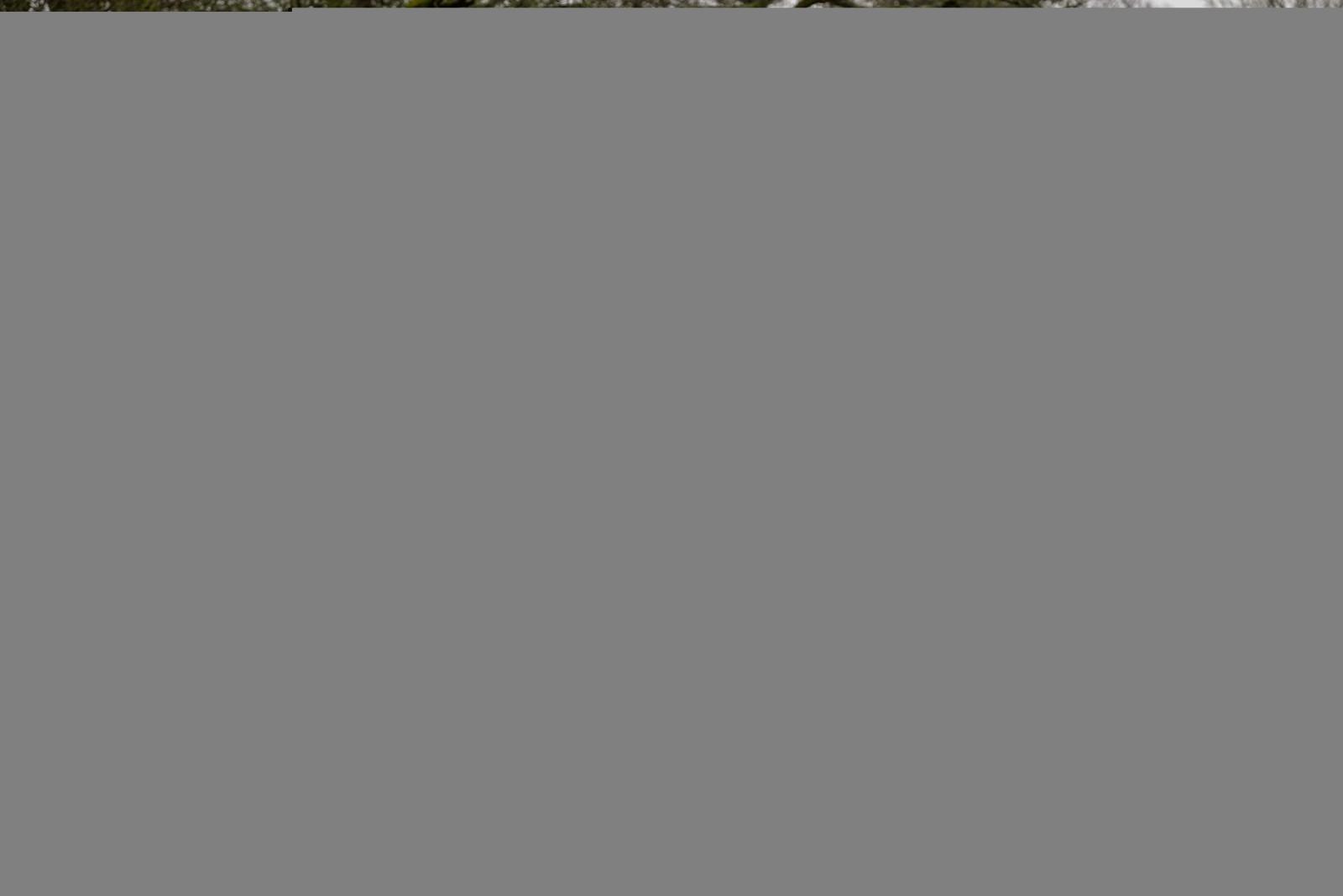 Fond d\'écran : modèle, rideau, 2015, Mitsubishi, Design d ...