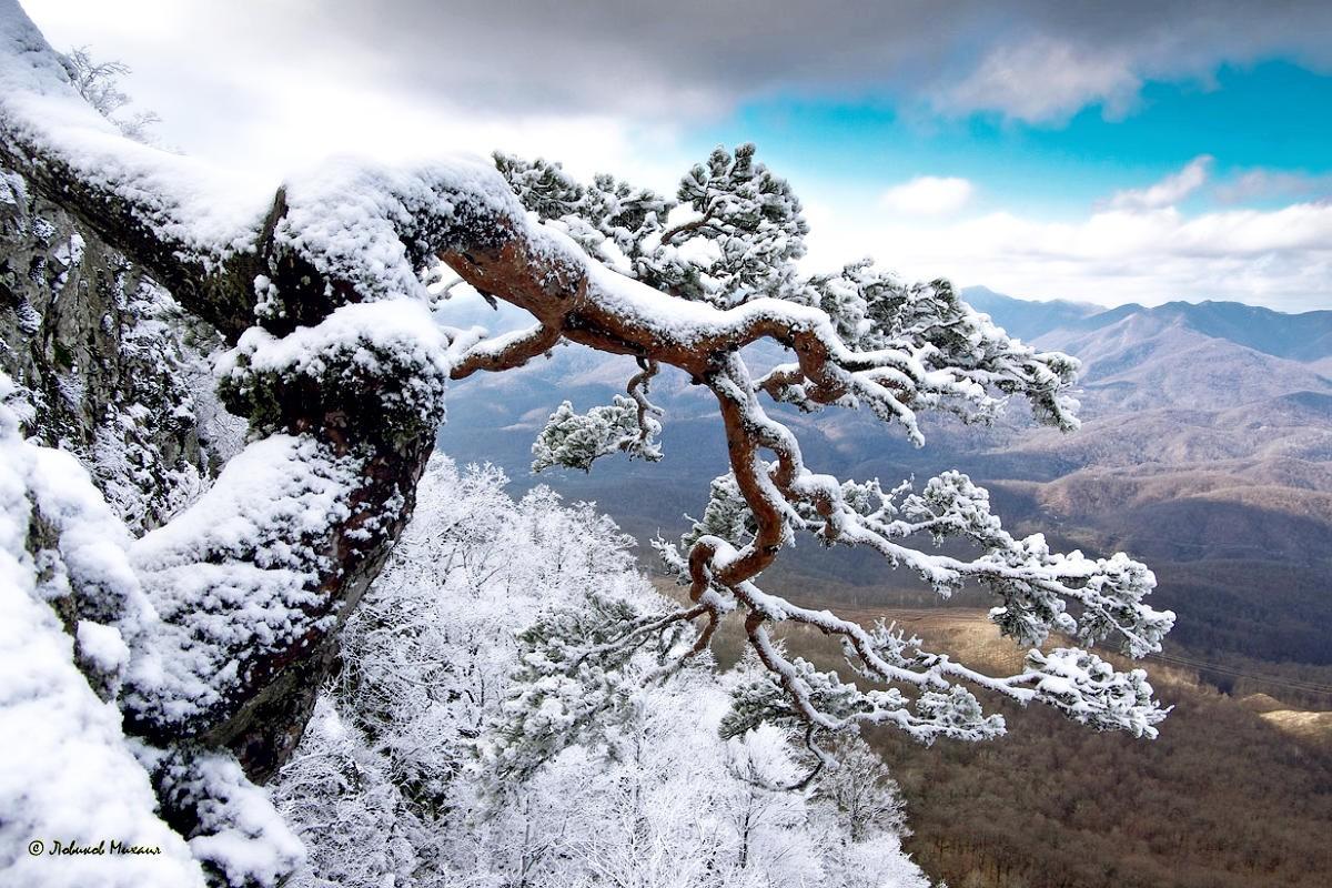 Красивые зимние пейзажи фото известных фотографов все моему
