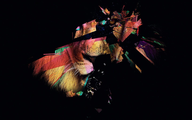 Fantastic Wallpaper Night Lion - 1440x900_px_lion-528398  Trends-698663.jpg!d