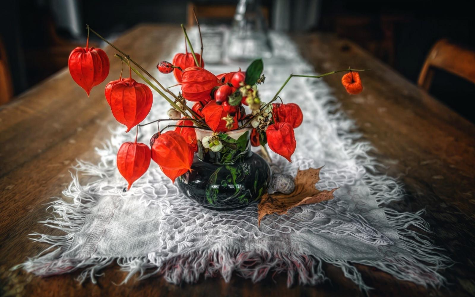 Fond d'écran : rouge, les plantes, table, Physalis, ART, fleur, plante, pétale, décoration de ...