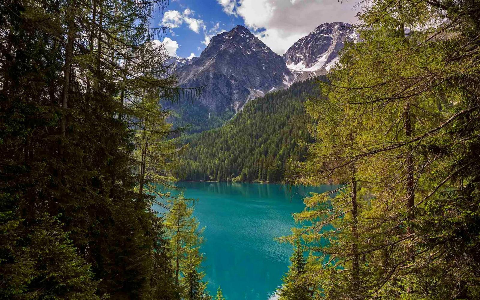 Sfondi alberi paesaggio foresta montagne italia for Eliminare acqua verde laghetto