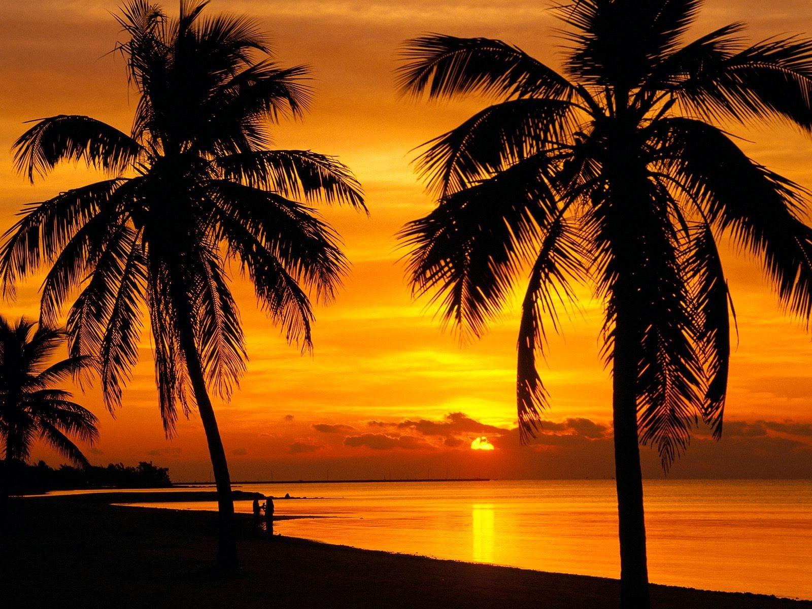 Sfondi : luce del sole, paesaggio, tramonto, mare
