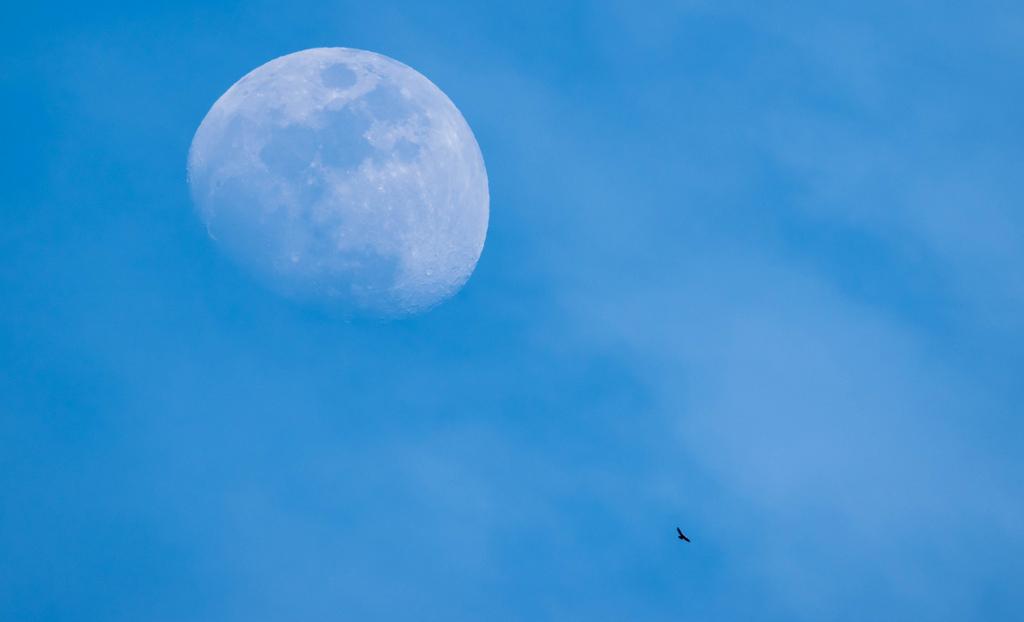 Hình Nền Bầu Trời Nhiếp ảnh Mặt Trăng Màu Xanh Da Trời