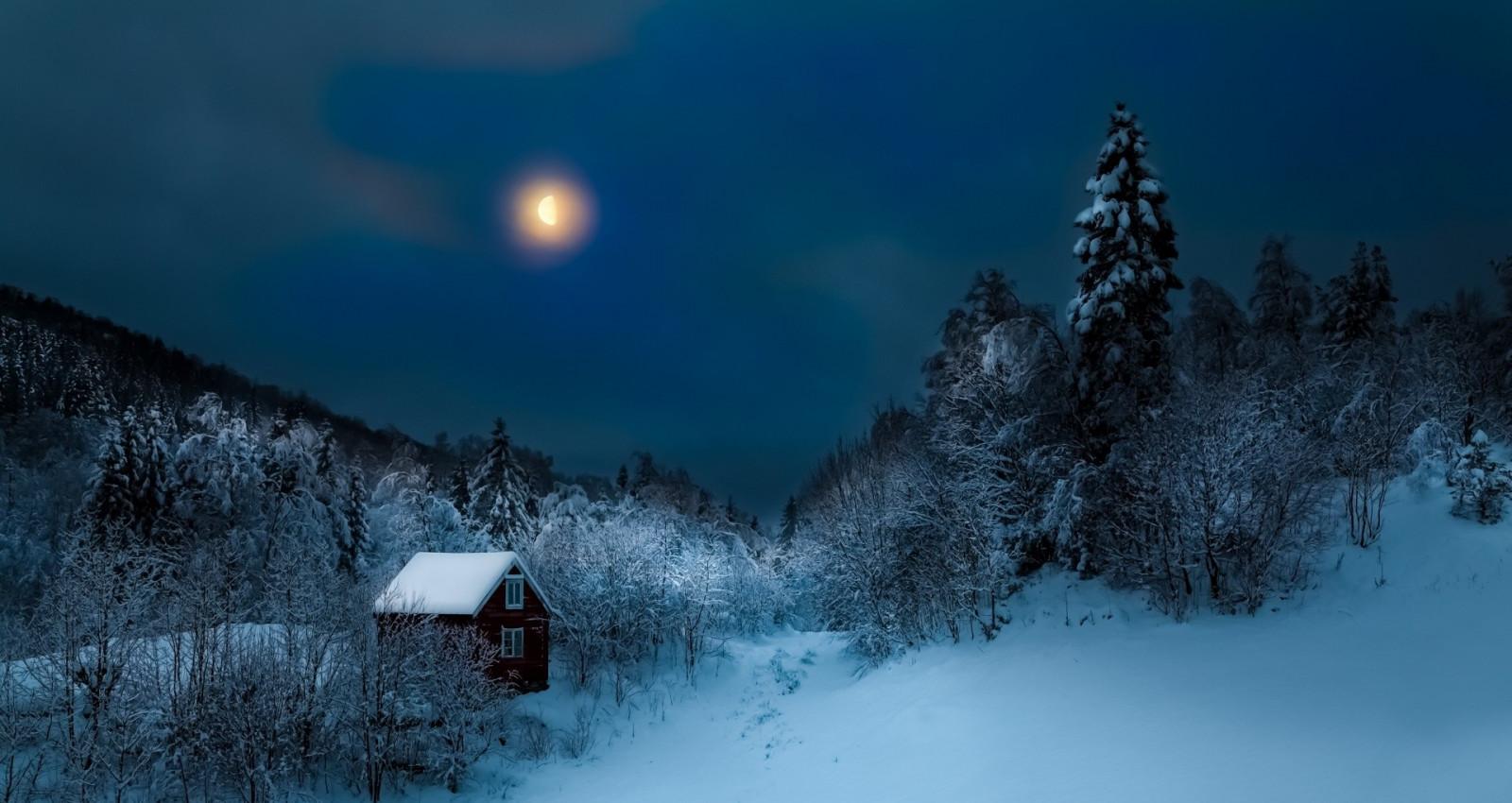 Картинки лунная ночь в лесу, днем рождения другу