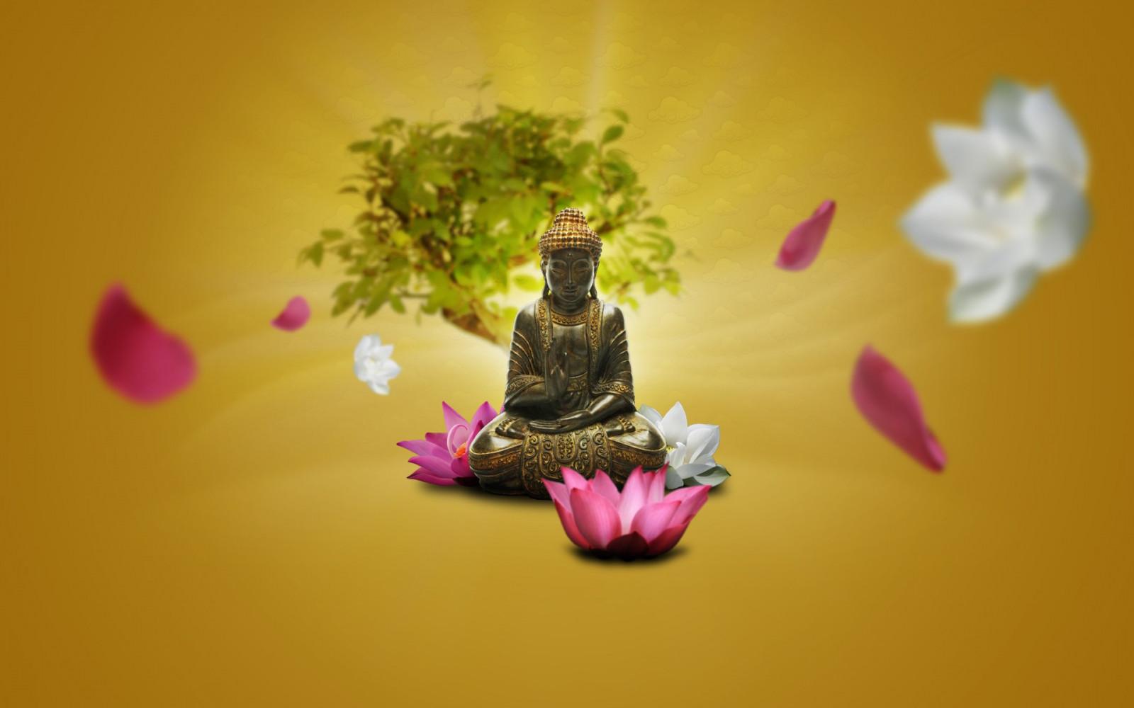 Fond d'écran : vert, jaune, rose, Fleurs de lotus, méditation, Bouddha, Zen, ART, Couleur, fleur ...