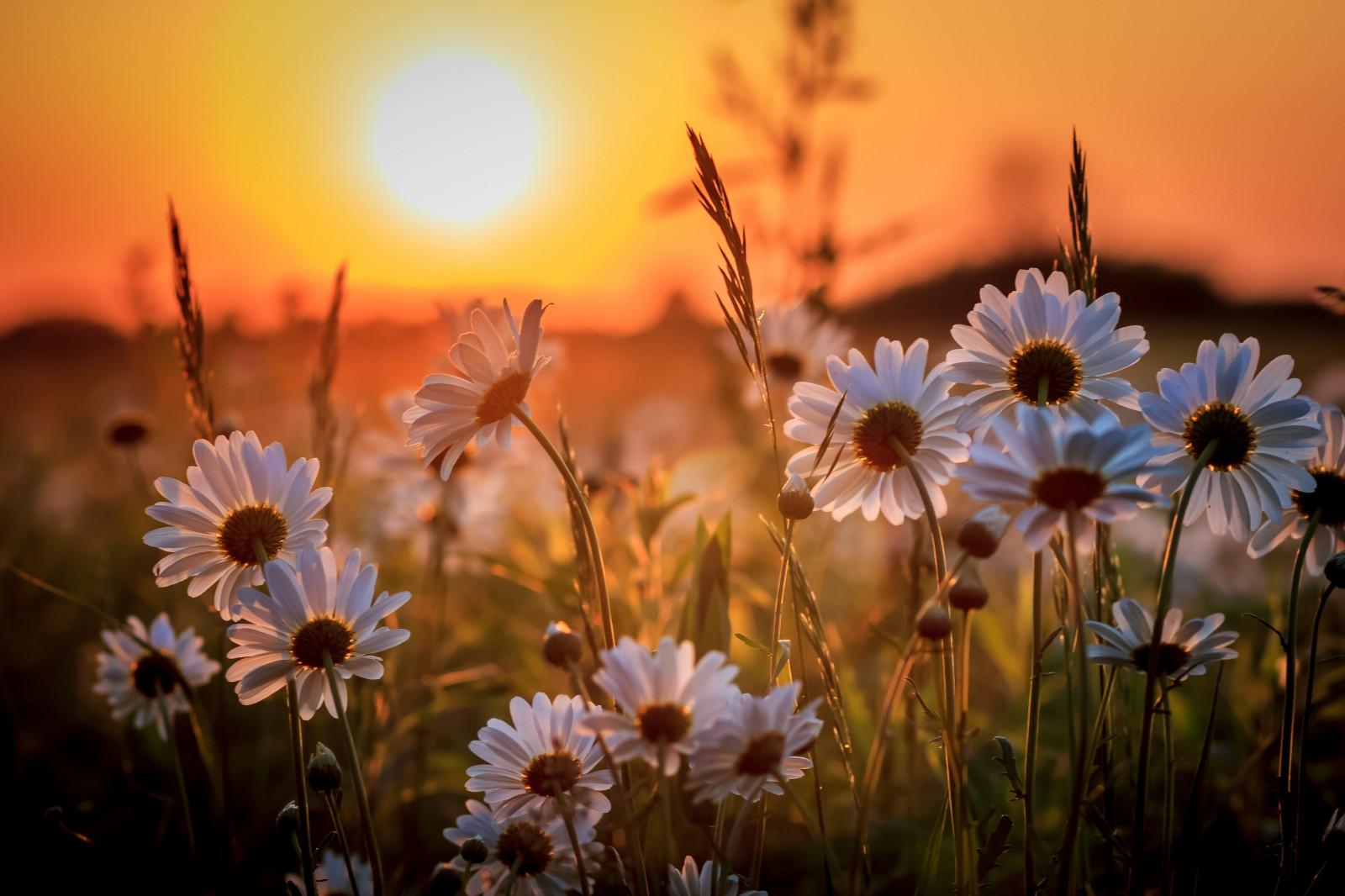 Стихи с добрым утром Стихи и поздравления 65