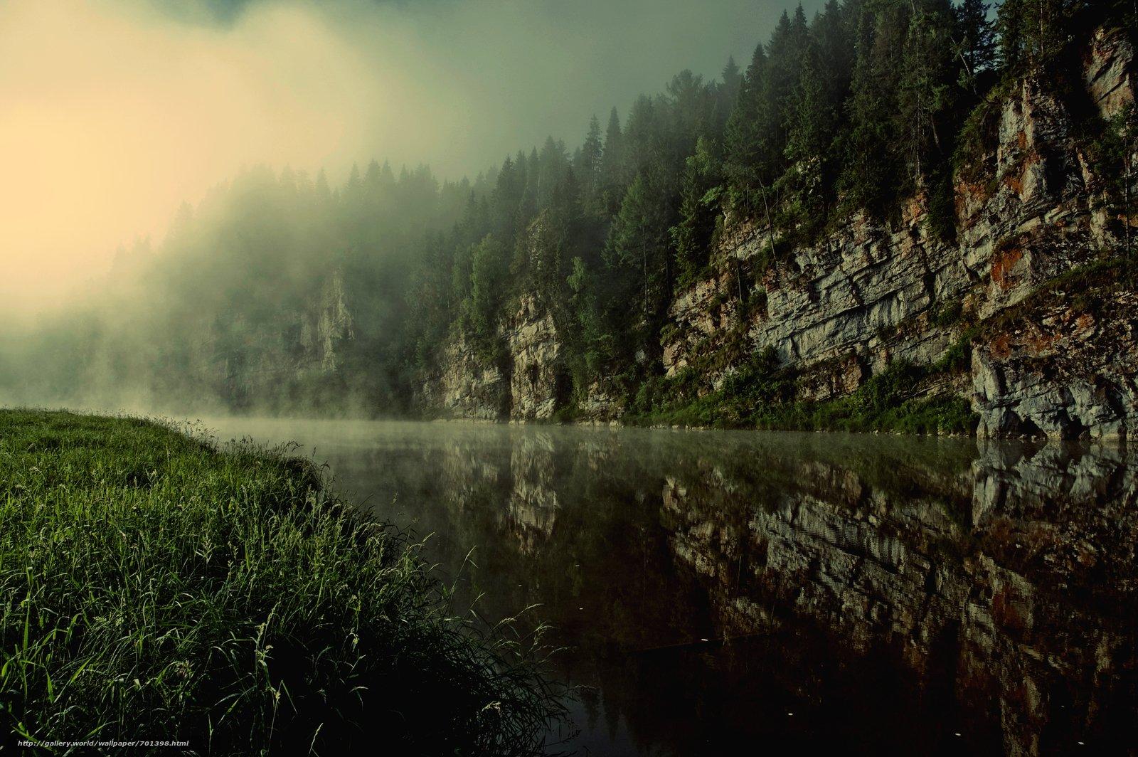 картинки реки и леса утром