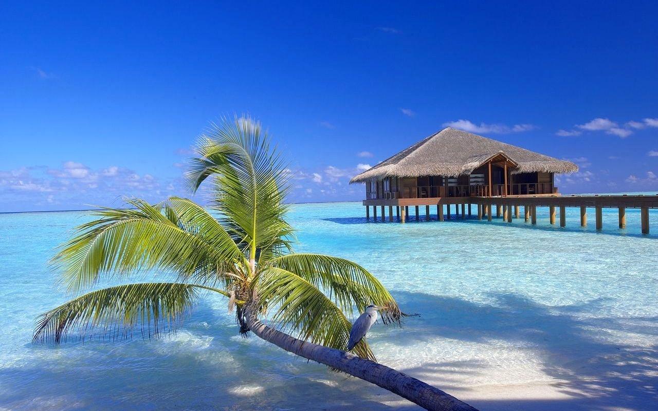 malediven tropisch meer strand - photo #39