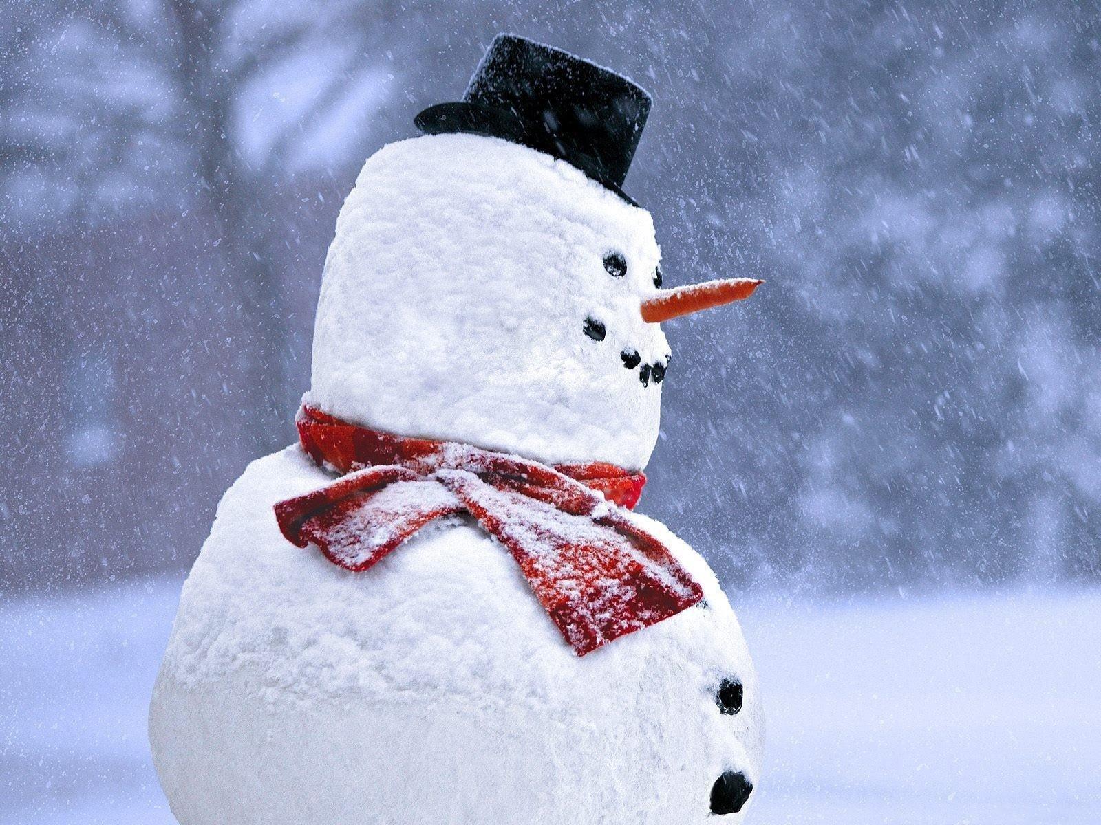 забывайте, что снеговик на аву картинки предназначена для